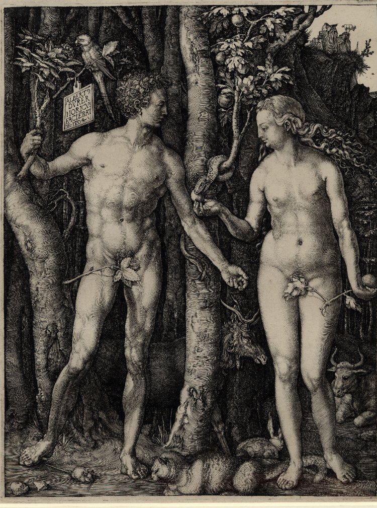 Image of Adam and Eve by Albrecht Durer